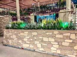 Steinpaneel und Pflanzen