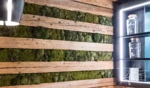 Kombination Holz und Moos