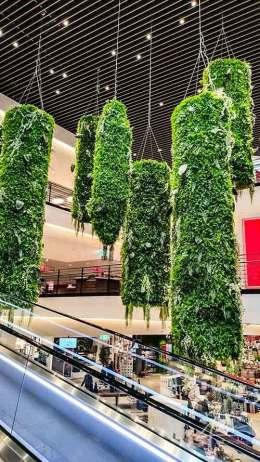 Pflanzen im Kaufhaus