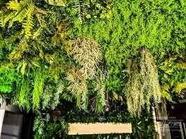 Kunstpflanzen von AdiK
