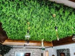 Kunstpflanzen an der Decke