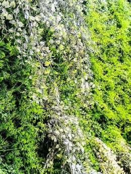 Wand mit Kunstpflanzen