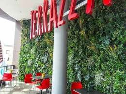 Pflanzenwand im Cafe