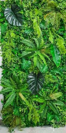 Unterschiedliche Kundtpflanzen