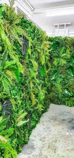 Pflanzenwand gemischt
