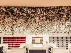 Kirschblüten an der Decke